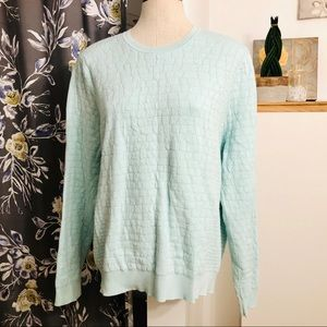 2/$20 // ALFRED SUNG Crew Neck Pastel Mint Sweater